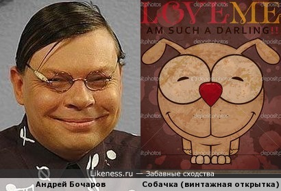 Собачка Андрюши Звездунова