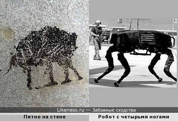 Пятно, которое нашёл balooo под старыми обоями, напоминает робота с четырьмя ногами