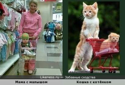 Приходите тётя кошка нашу детку покатать