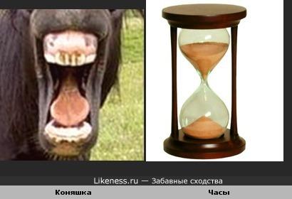 Лошадиная улыбка похожа на песочные часы.