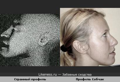 """Тотальная промывка мозгов: Ксения Собчак похожа на профиль из """"Вайомингского инцидента"""" ."""