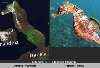 Галапагосский остров похож на морского конька