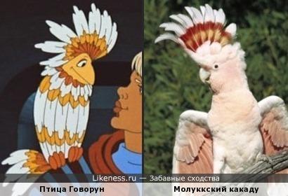 - Птица Говорун стоит це-елого зоопарка!