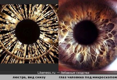 Вид сверху на люстру напоминает человеческий глаз под микроскопом
