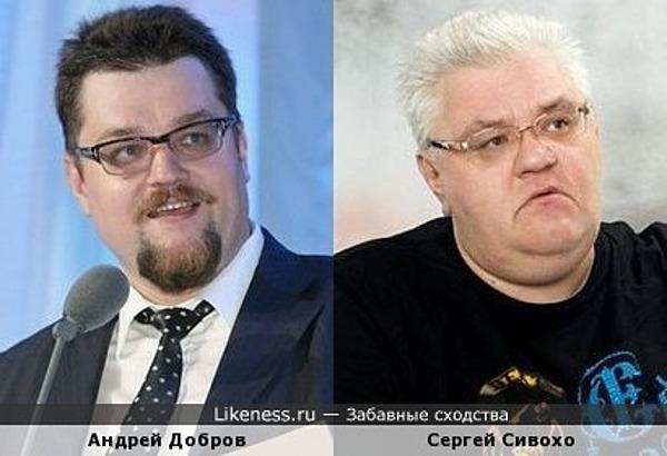 Андрей Добров похож на Сергея Сивохо