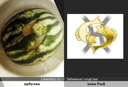 АрбуЗодиак )