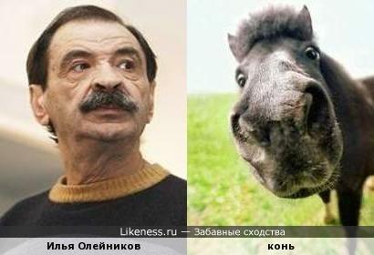 Илью Львовича не раз сравнивали с разными животинками... А мне он напоминал коня. Усталого усатого коня...