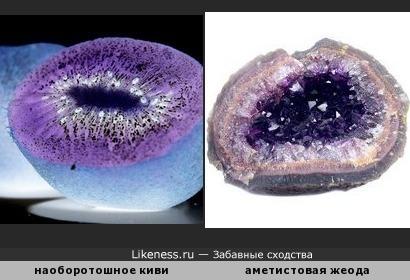 Фото киви в инверсии напомнило жеоду аметиста