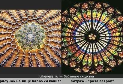Природа - храм, природа - мастерская...