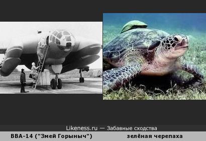 """Фюзеляж самолёта-амфибии ВВА-14 (""""Змей Горыныч"""") похож на морскую зелёную черепаху"""