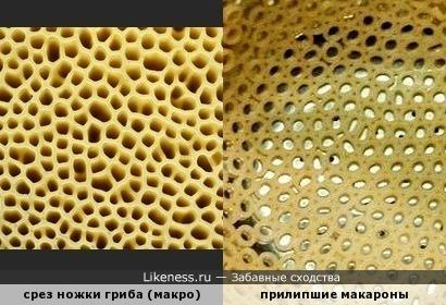 Макароны с грибами - это вкусно.)