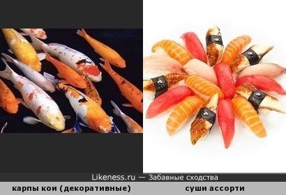 Эти рыбки - не для суши, только для пруда.)