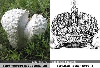 """""""Сказка про то, как Царь Горох с Грибами воевал, и как Царь Грибов корону свою потерял"""""""