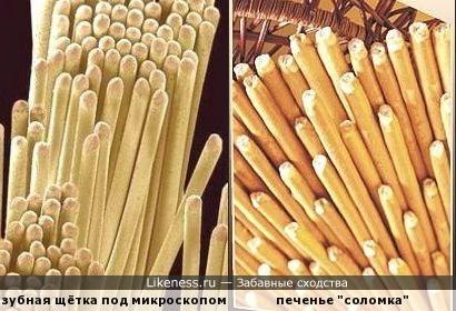 Не забывайте чистить зубы после еды!