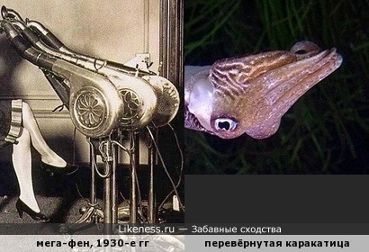 "Салон красоты ""Каракатица"