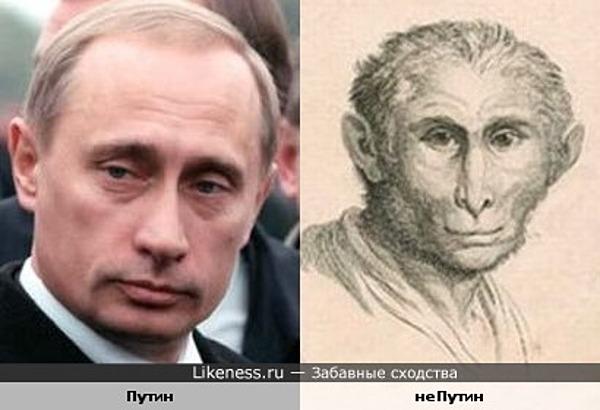 Владимир Путин и старинный рисунок