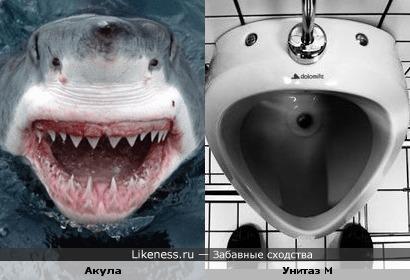 Писсуар похож на акулу