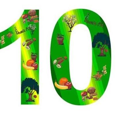 Картинки цифра 10 детские